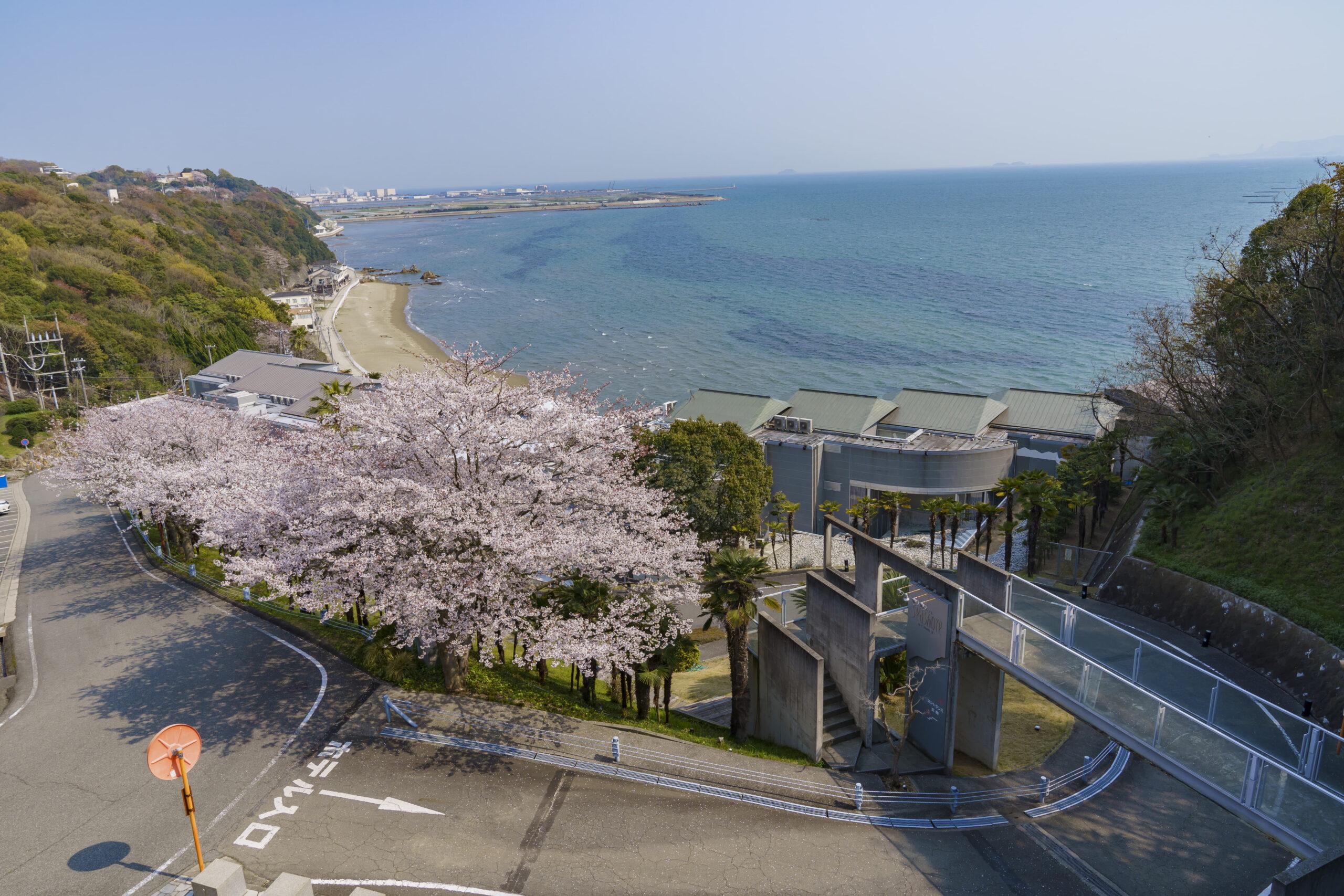 新舞子海水浴場